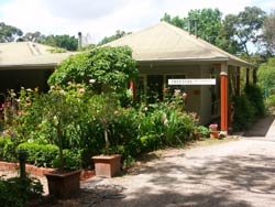Treetops Bed And Breakfast - Accommodation Daintree