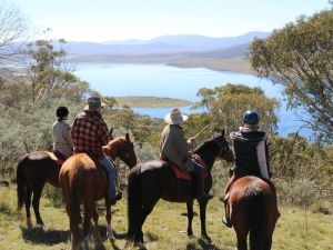 Reynella Homestead and Horseback Rides - Accommodation Daintree