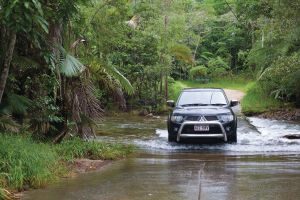 The Pioneer Valley and Eungella National Park - Accommodation Daintree