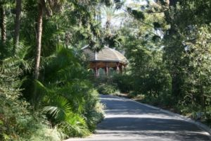 Royal Botanic Gardens Victoria - Accommodation Daintree