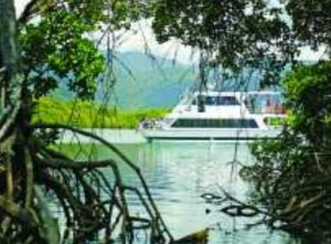 Cairns Harbour Cruises - Accommodation Daintree