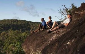 Cooktown Aboriginal Art Tours - Accommodation Daintree
