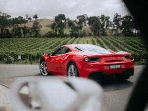 The Prancing Horse Supercar Drive Day Experience - Melbourne Yarra Valley - Accommodation Daintree